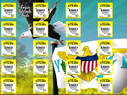 VI Lottery Eagle VI Pride Ticket
